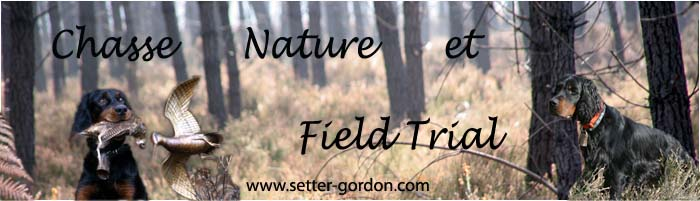 Chasse, Nature et Field Trial